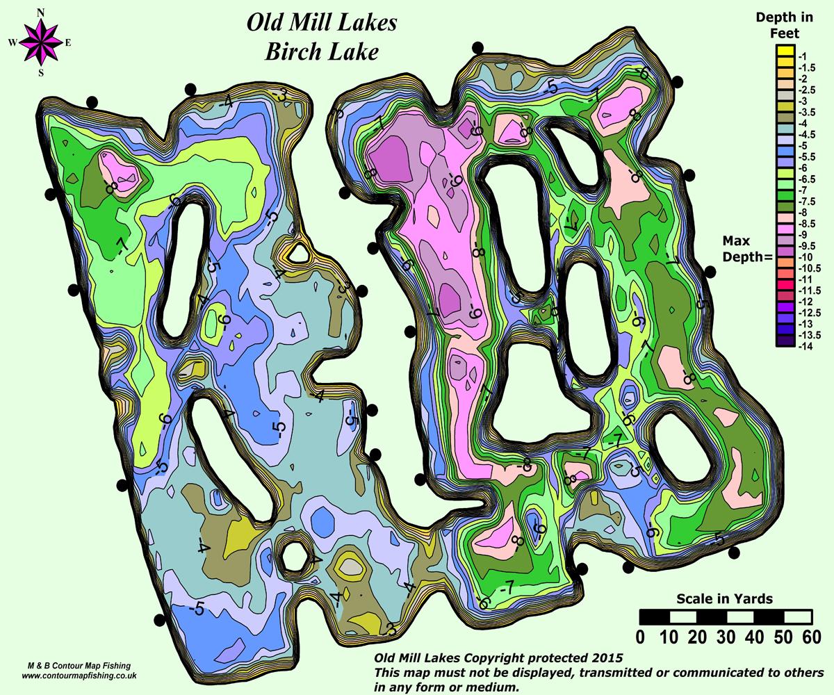 Birch Contour Map